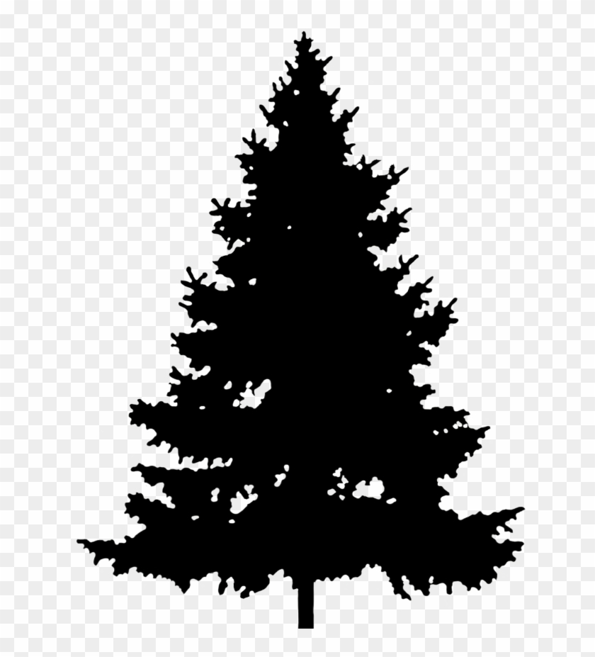 Christmas Holly Clipart Png.Christmas Tree Silhouette Png Silhouette Pine Tree Clipart