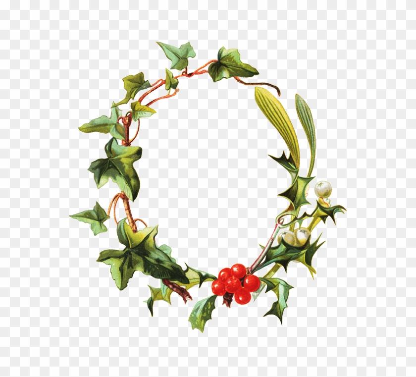 Mistletoe Clipart Frame Clip Art Hd Png Download 579x709 3005044 Pngfind Mistletoe clipart png , transparent cartoon, free cliparts. mistletoe clipart frame clip art hd