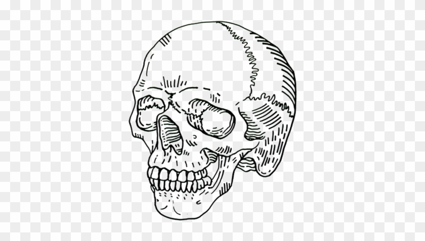 Ftestickers Sticker Skull Drawing Aesthetic Hd Png Download