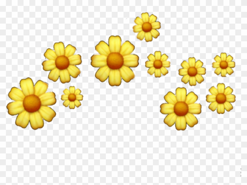 Popular And Trending Flowers Background Tumblr Stickers Sunflower Hd Png Download 1485x953 3094724 Pngfind