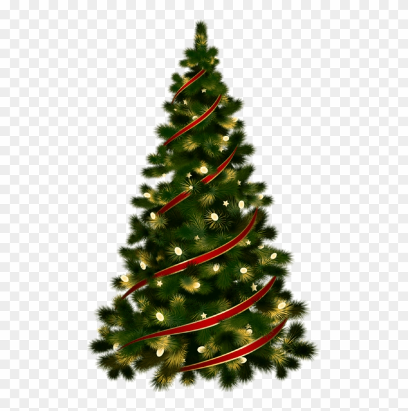 free png large transparent christmas tree with red christmas tree no background png download 480x766 313658 pngfind free png large transparent christmas