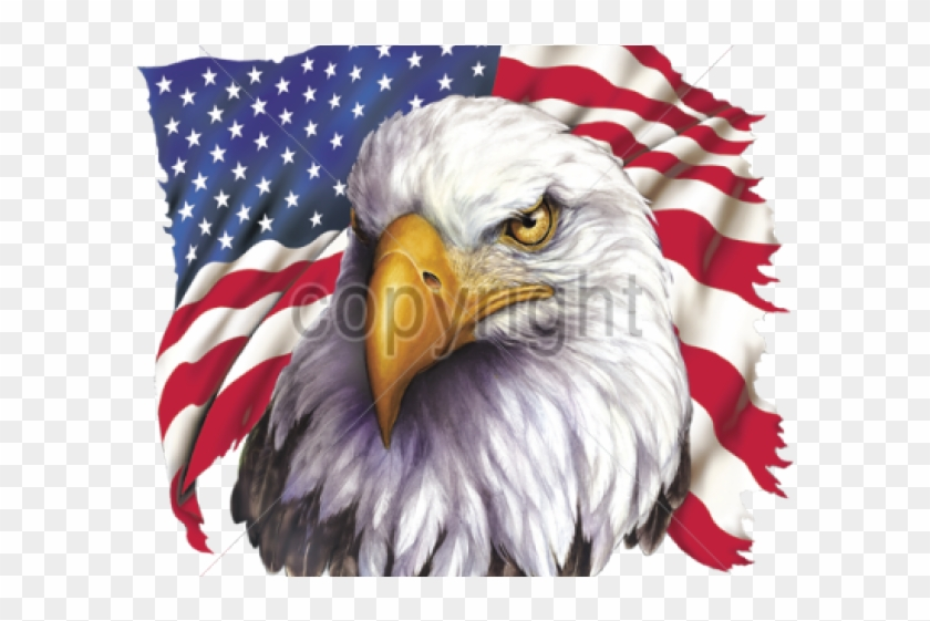Eagles patriotic. Bald eagle clipart american
