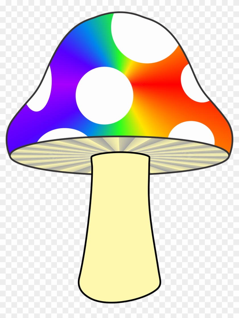 Creative Trippy Drawings Mushrooms Hd Png Download 999x1280