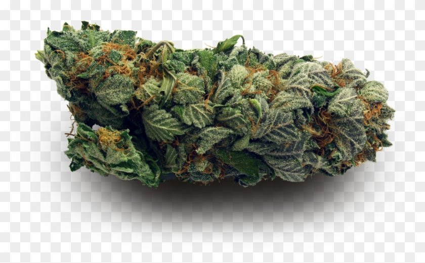 Transparent Weed Nugs Made By Totally Transparent I M Too High For This Shit Hd Png Download 1280x960 3450101 Pngfind