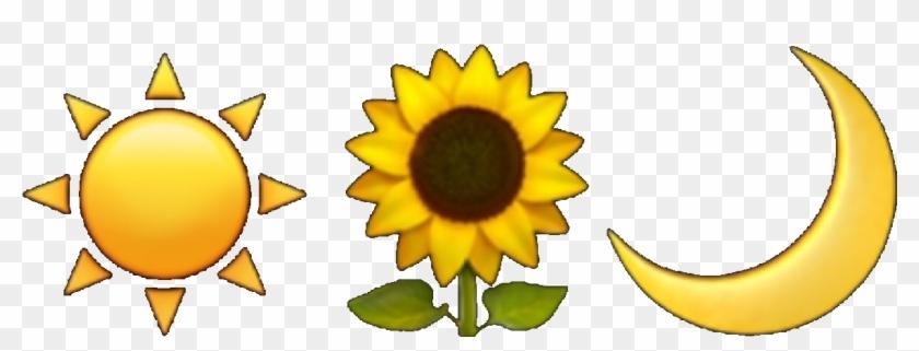 Sunflower aesthetic. Tumblr emoji moon sun