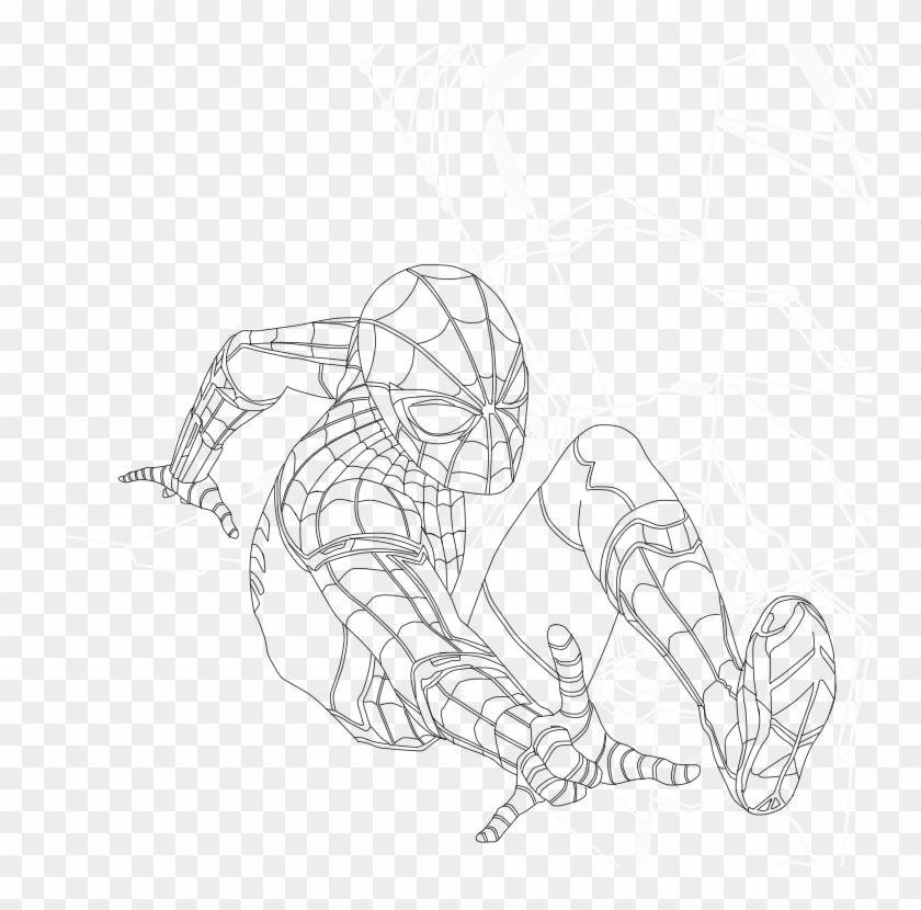 Drawn Spiderman Spiderman Homecoming - Line Art, HD Png