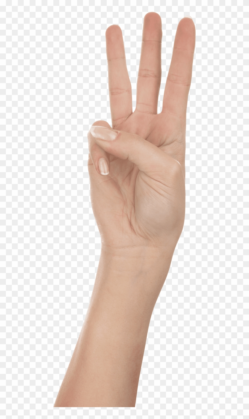 Free Png Download Three Finger Hand Png Images Background Hand Three Png Transparent Png 480x1332 358686 Pngfind After tinkering with the color similarity option, we found that 28% does the best job and deletes all present. free png download three finger hand png