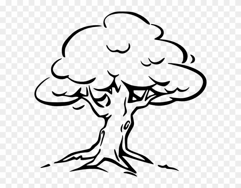 Tree Clip Art Oak Tree Drawing Easy Hd Png Download 600x575 3512647 Pngfind