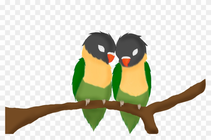Yellow Collared Lovebird - Drawing Birds Of Love, HD Png