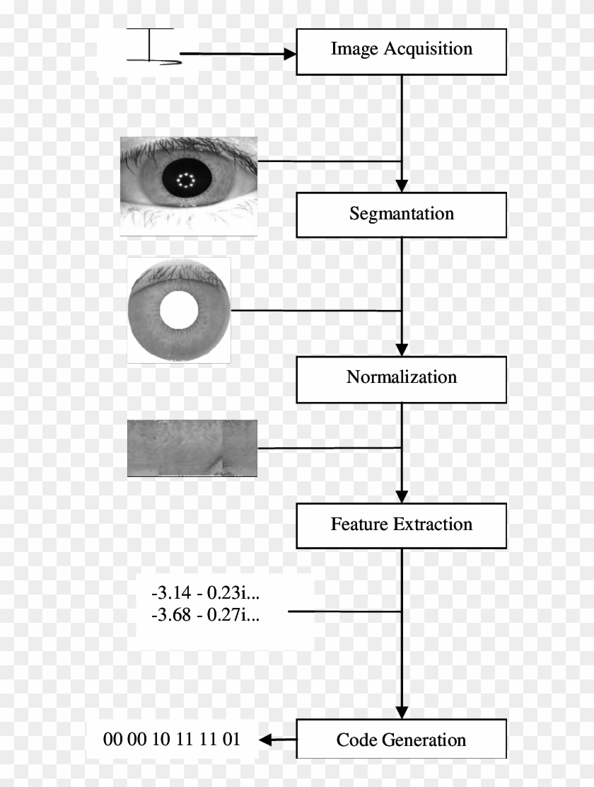 Block Diagram Of An Iris Recognition System Download