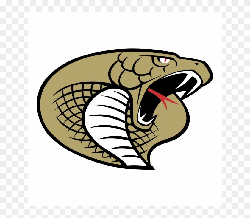 Twiggs Cobras HD  School High Logo Carolina County Logo, -
