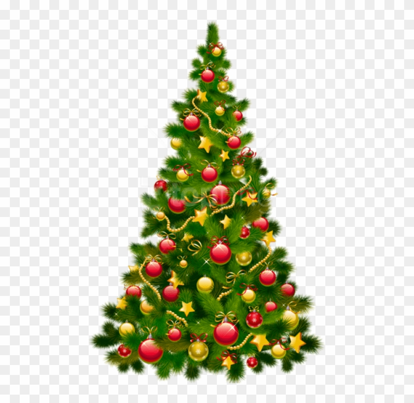 Free Png Large Transparent Christmas Tree With Ornaments Png Clipart Christmas Tree Png Download 480x737 3686040 Pngfind
