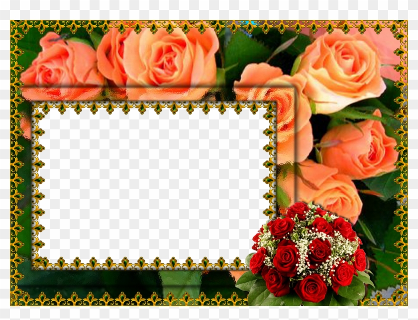 Abstract Floral Frame Png Hd Flower Photo Frame