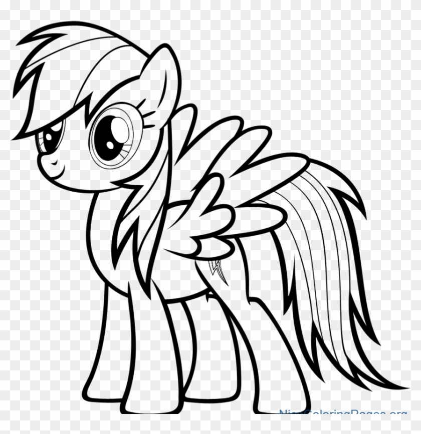 Rainbow Dash Photo Drawing My Little Pony Rainbow Dash Drawing Hd Png Download 894x864 382859 Pngfind