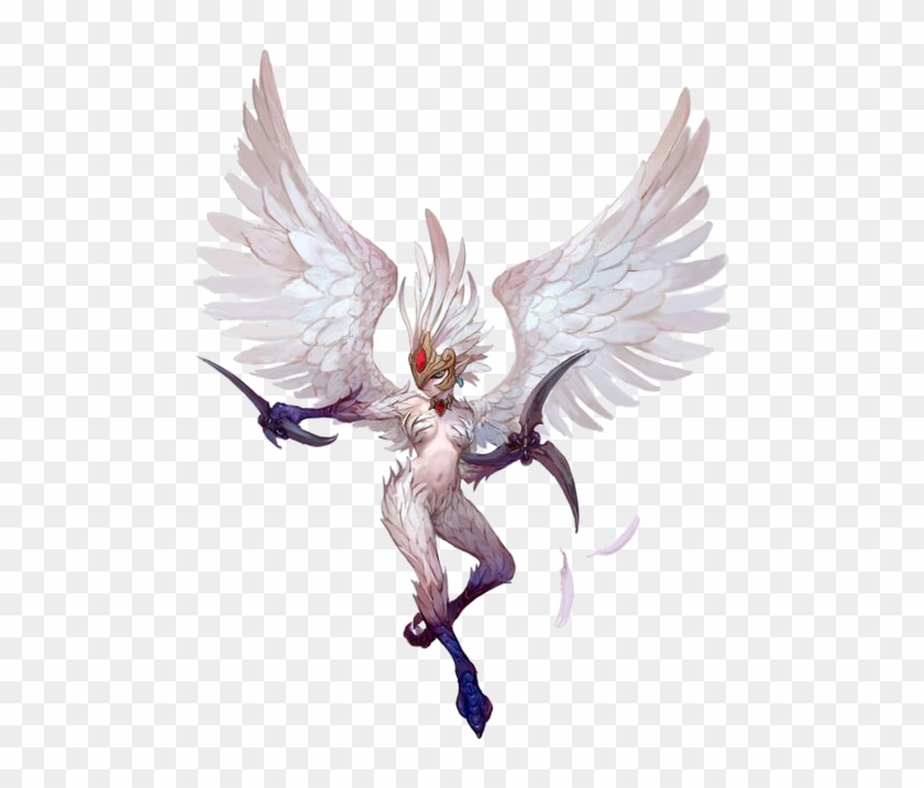 Dragon Nest Harpy, HD Png Download - 497x637(#3841249) - PngFind
