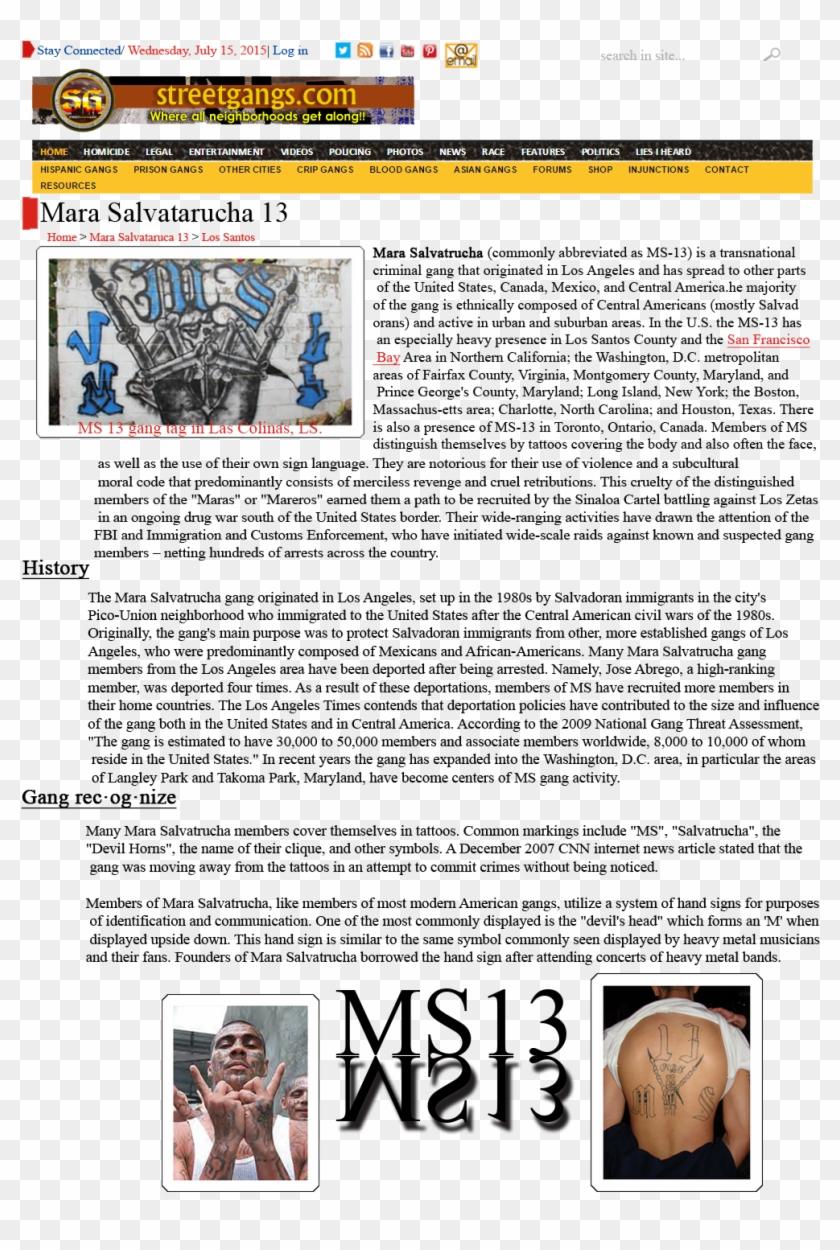 Qvzu39t - Ms 13 Gang Signs, HD Png Download - 1000x1432