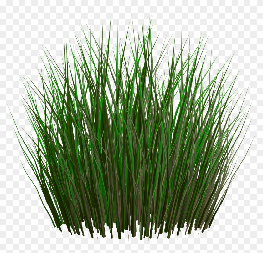 Grass Png Image, Green Grass Png Picture - Unity Grass