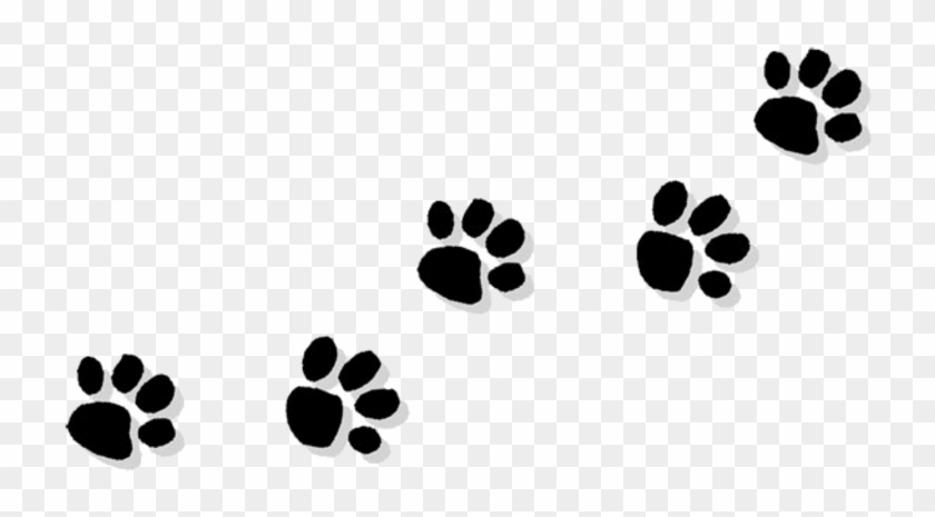 Cat Paw Bulldog Puppy Clip Art Cat Paw Print Transparent Background Hd Png Download 770x513 45130 Pngfind That ferret won't know what hit him in 3.2. cat paw bulldog puppy clip art cat