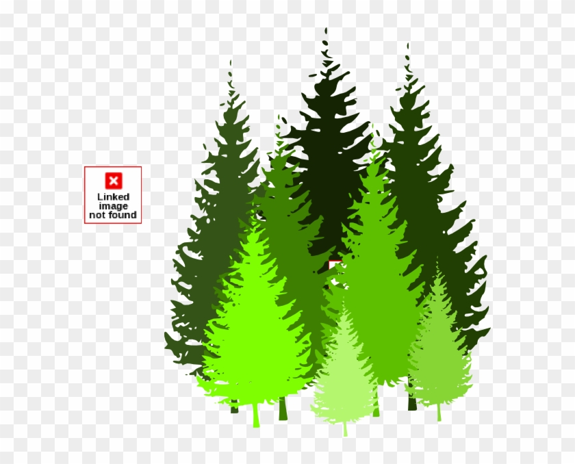 Trees Pine Tree Silhouette Clipart Clipart Kid Pine Tree Cartoon Png Transparent Png 594x598 48058 Pngfind Redwoods are magnificent trees only found in a few areas of the world. trees pine tree silhouette clipart