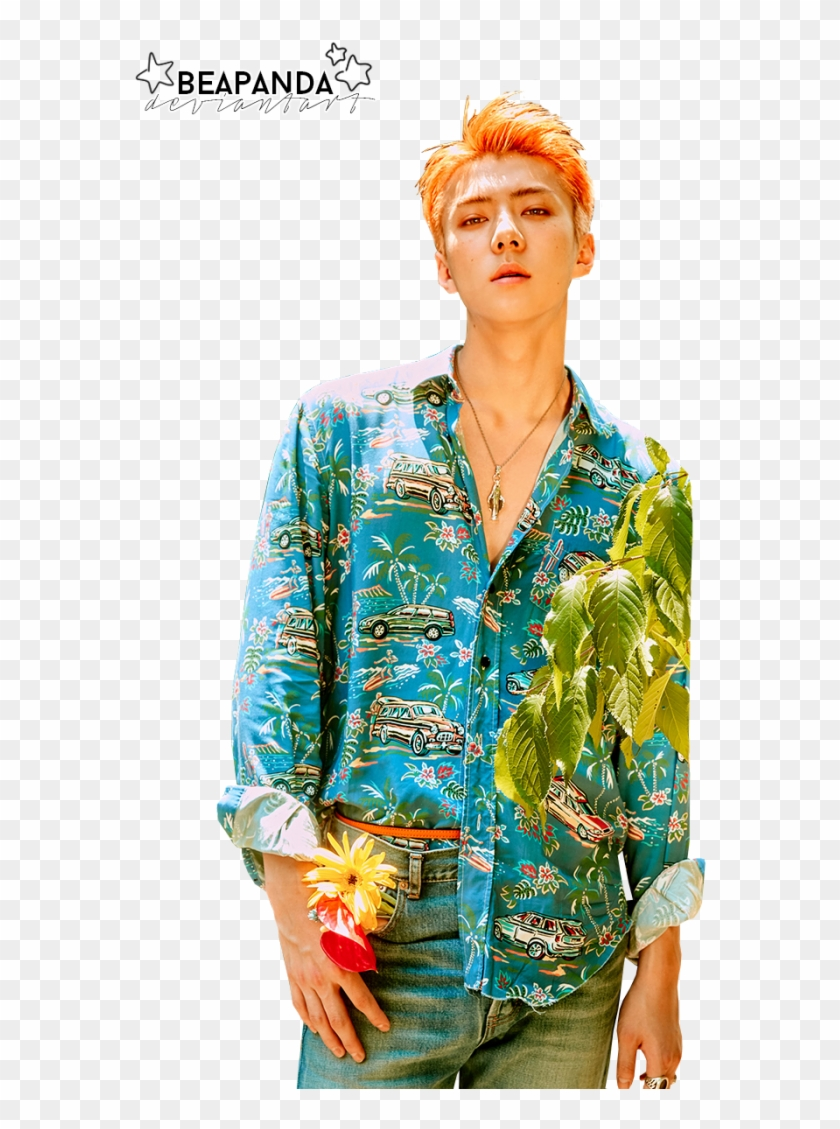 Exo Sehun Exo Sehun 2017 Sehun Sehun Ko Ko Bop Suho The War Photoshoot Hd Png Download 700x1050 4084721 Pngfind