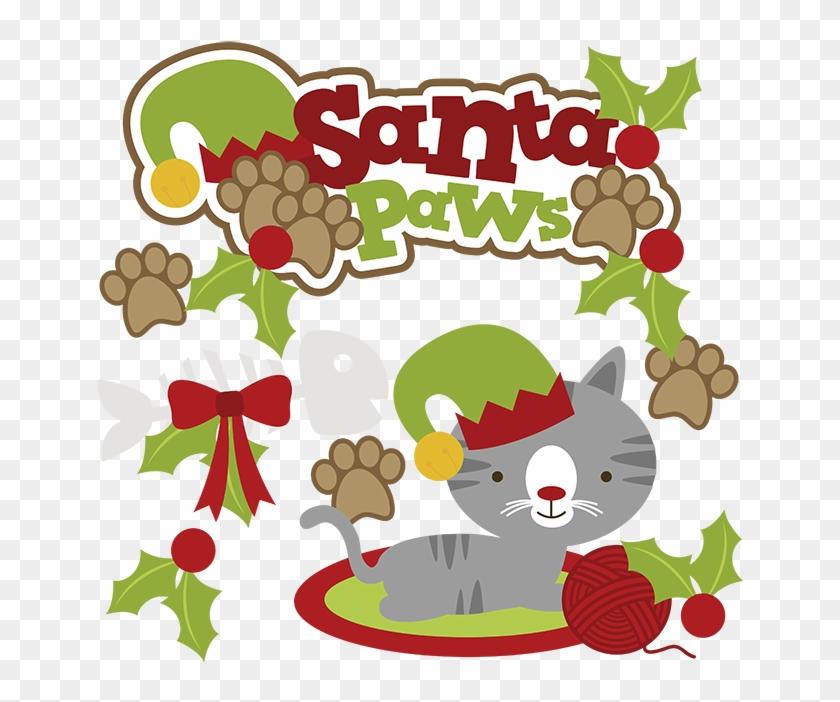 Santa Paws Svg Cat Clipart Cat Svg Cute Cat Clip Art Cartoon Christmas Cats Png Transparent Png 647x622 4115846 Pngfind