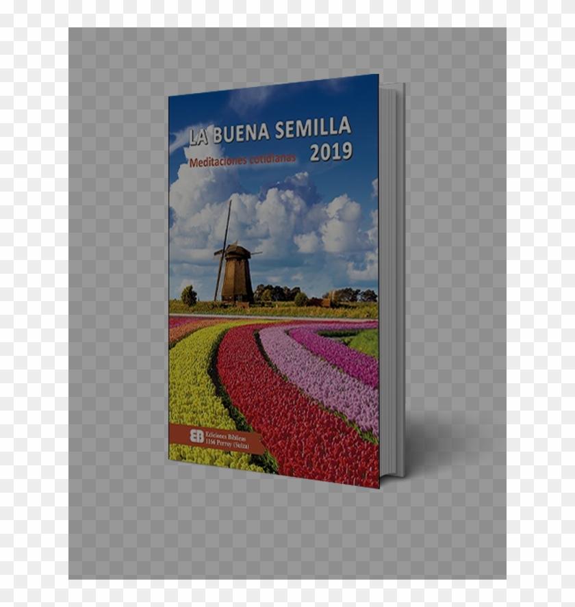 Calendario M.La Buena Semilla Calendario La Buena Semilla 2019 Hd Png