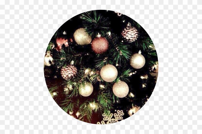 aesthetic background christmas tree trees light
