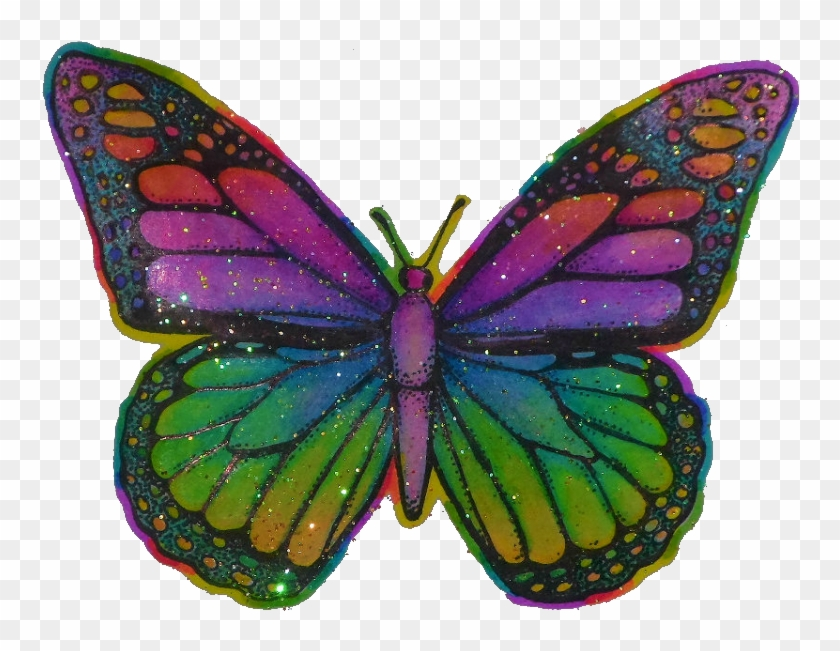 Butterfly Hippy Trippy Psychedelic Tumblr Aesthetic Trippy