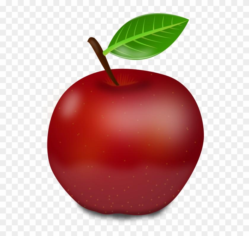Apple fruit. Red fruits png transparent