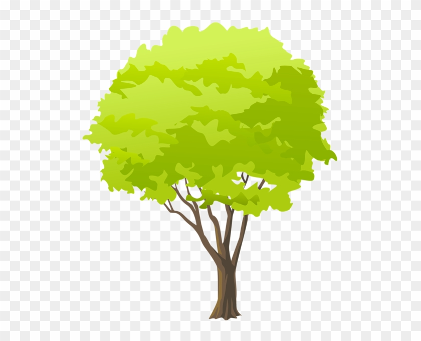 Green Tree Png Clip Art Free Clipart Green Trees Transparent Png 513x600 4271728 Pngfind