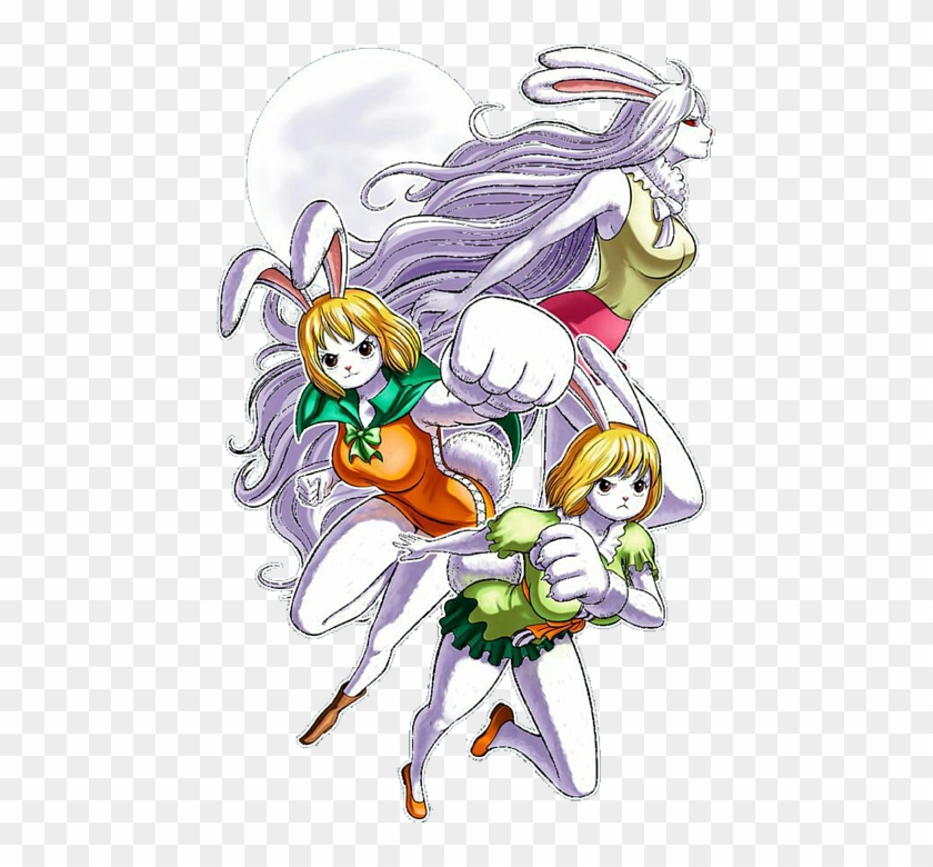 Carrot One Piece Wallpaper Hd Hd Png Download 451x700 4325714