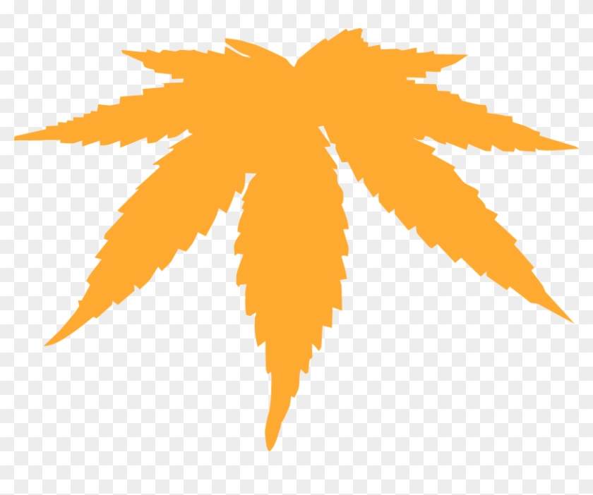 Dank Weed Leaf Cannabis Marijuana Leaves Vector Free Hd Png Download 828x622 4329322 Pngfind