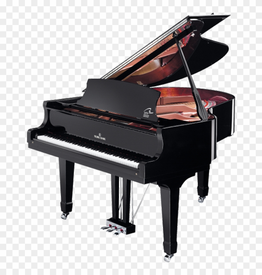 Yp175 Grand Piano Hd Png Download 669x800 4430256 Pngfind