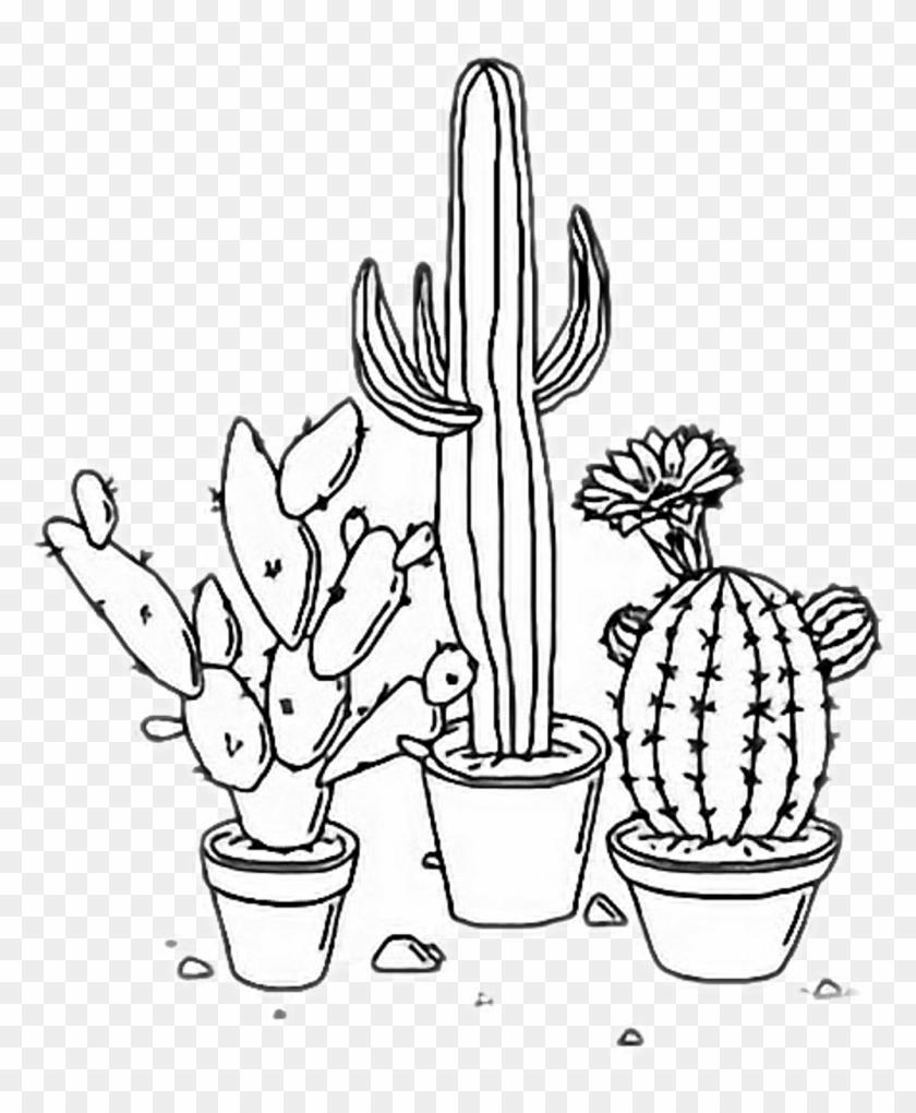 Free download sad aesthetic drawings tumblr india s cactus