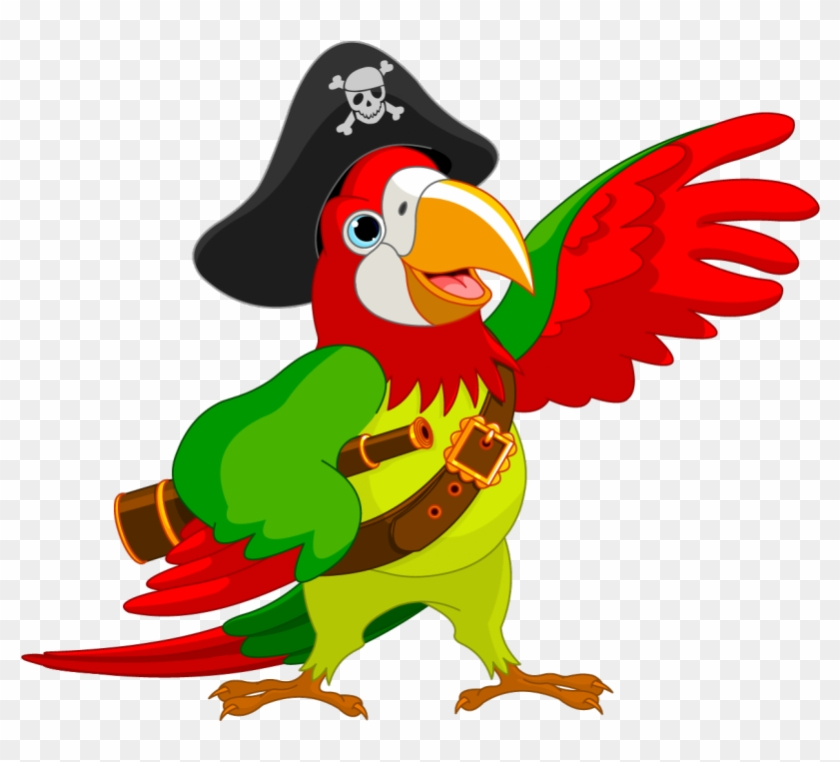 Pirate Clipart Parot Cartoon Pirate Parrot Hd Png Download 800x800 457562 Pngfind