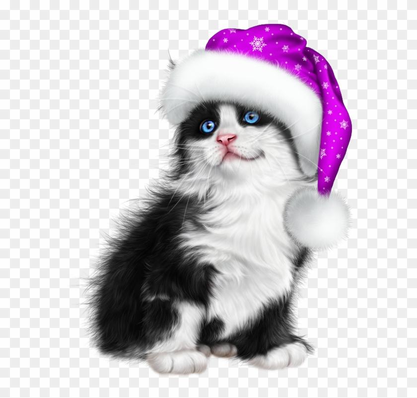 Purple Christmas, Christmas Cats, Kitten Cartoon, Kitten