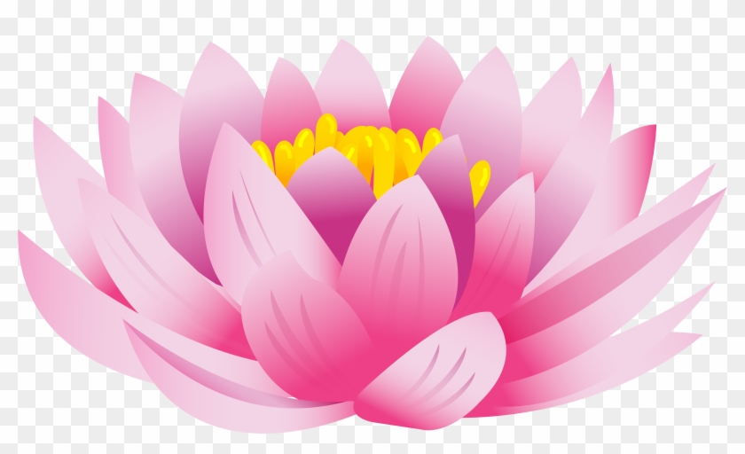 Download Lotus Flower Png Images Background Gambar Bunga Teratai