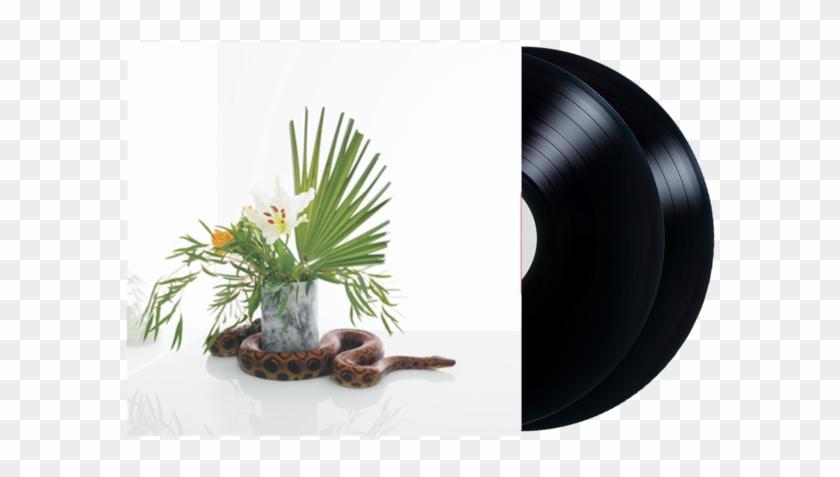 White Noise 2-disc Vinyl - Noah Gundersen, HD Png Download - 600x600