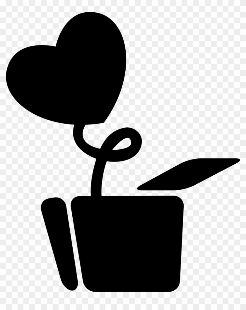 Love Plant With Heart Shaped Leaf In A Pot Comments Panela Com