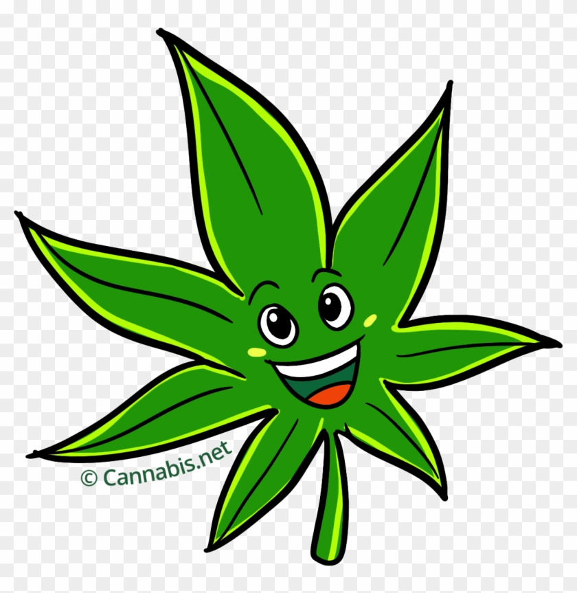 marijuana clipart daun cannabis cartoon hd png download 1157x1134 4673154 pngfind cannabis cartoon hd png download