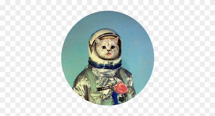 I U0026 39 M Not Afraid Of You  Dickbutt - Gemini Space Suit  Hd Png Download - 800x600  4727154