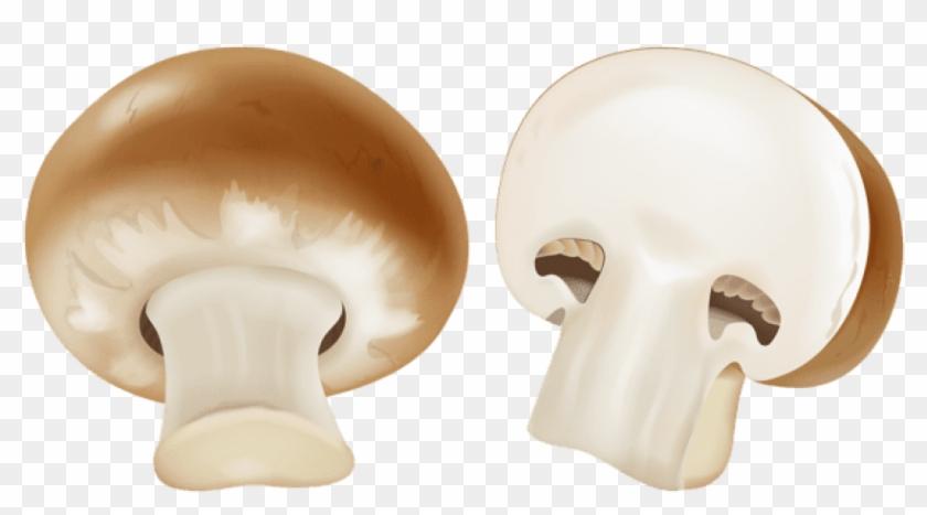 brown mario mushroom name