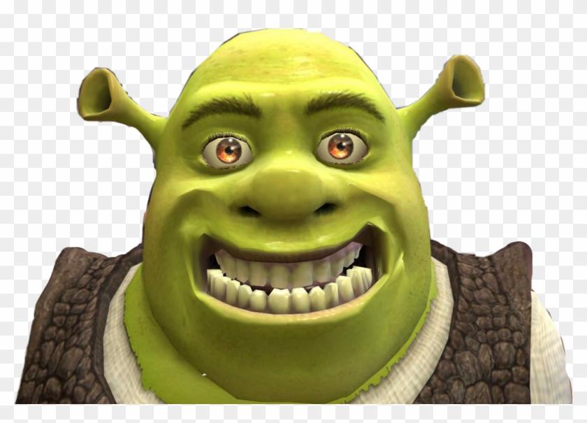 Shrek Sticker Shrek Memes Hd Png Download 1024x689 50622 Pngfind