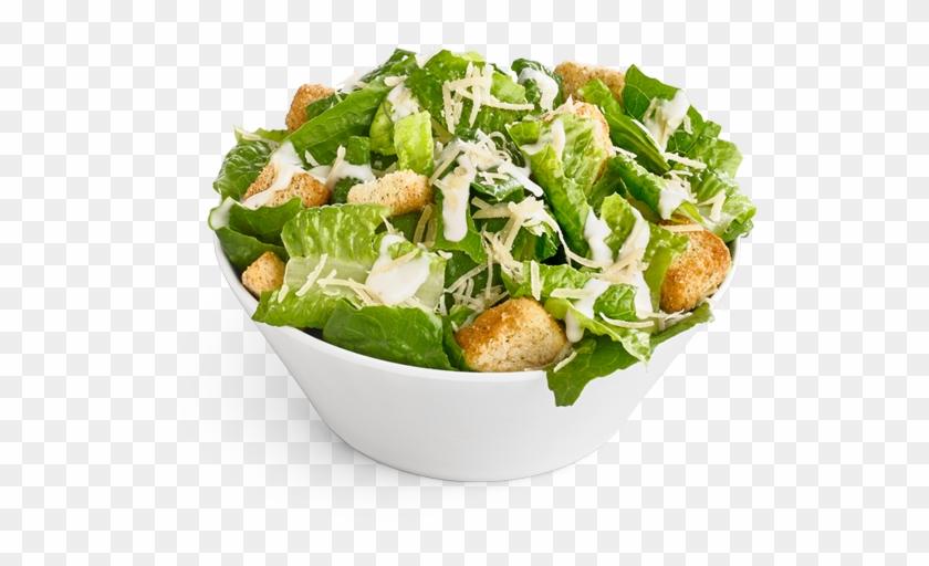 Garden Salad Png Caesar Salad Bowl Png Transparent Png 740x504 501598 Pngfind
