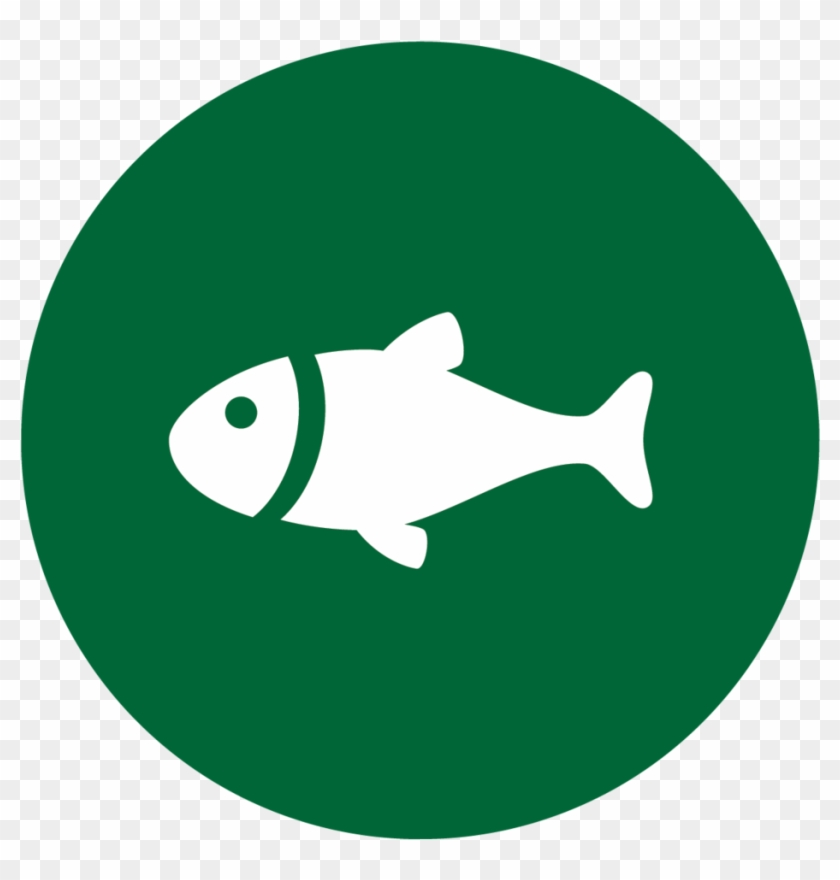 Download Fishing Icons Fish Sign Hd Png Download 1000x981 5040371 Pngfind