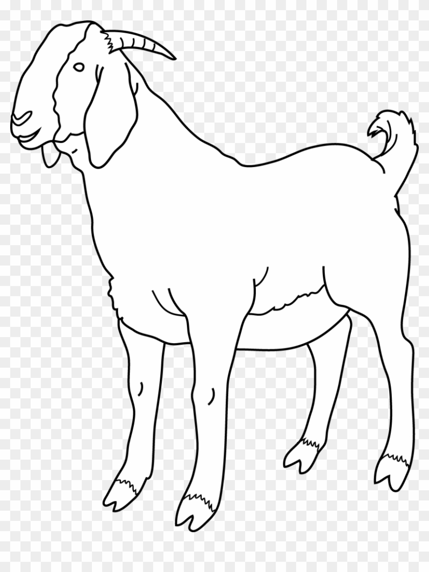 Farm Animal Coloring Pages | Goat Kids Coloring Page and Kids ... | 1120x840