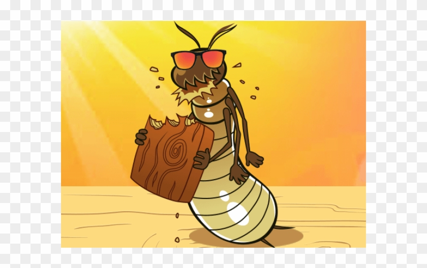 Termite Cartoon Hd Png Download 600x600 5321854 Pngfind