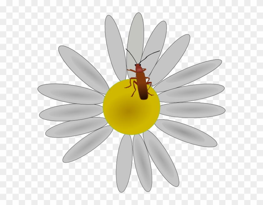 How To Set Use Bug On A Daisy Svg Vector, HD Png Download - 600x576