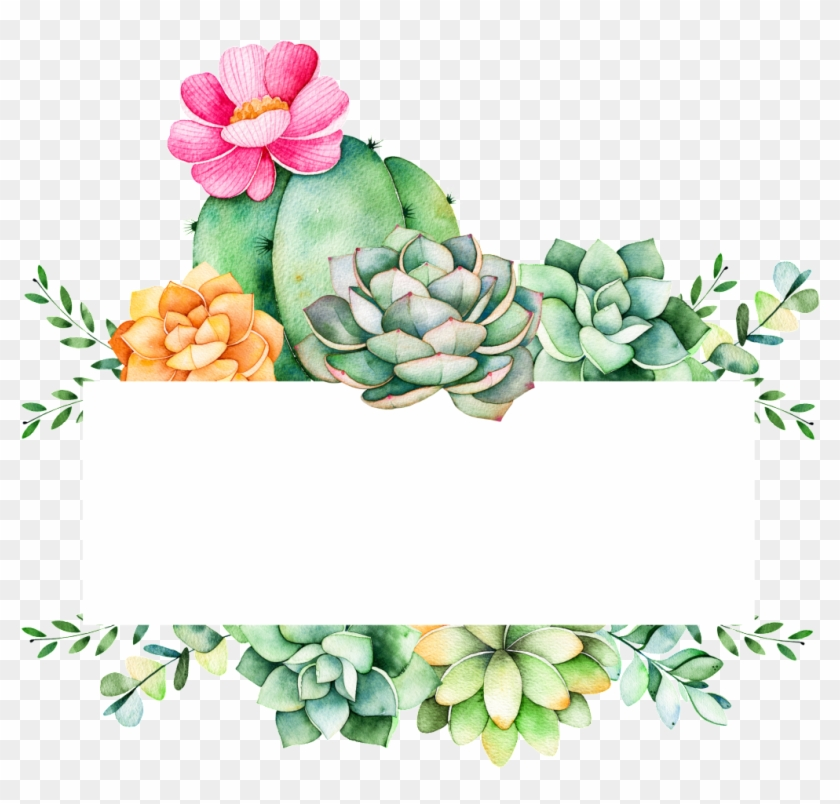 Easy To Grow Plants Cartoon Transparent - Succulent Logo, HD Png
