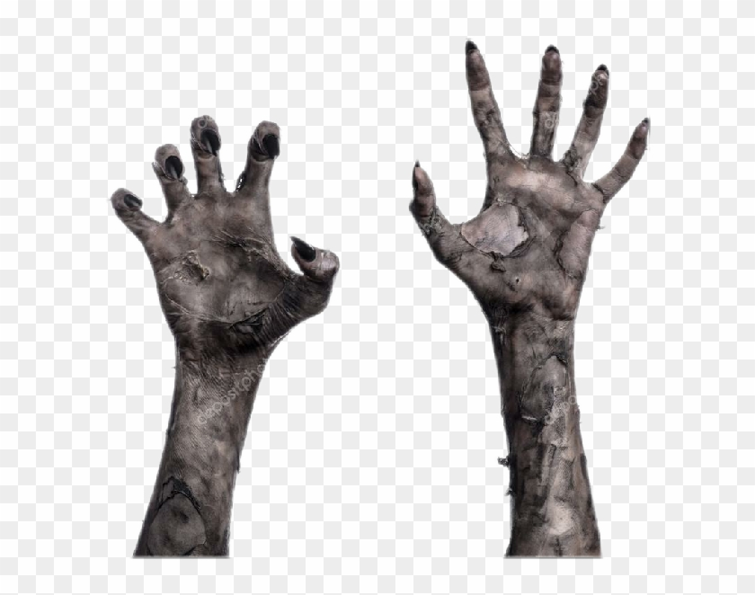 728 X 696 3 Zombie Hand Transparent Background Hd Png Download 728x696 572324 Pngfind The same hand sign can be seen as offensive in some cultures, including in parts of europe, the middle east, and south america. 728 x 696 3 zombie hand transparent